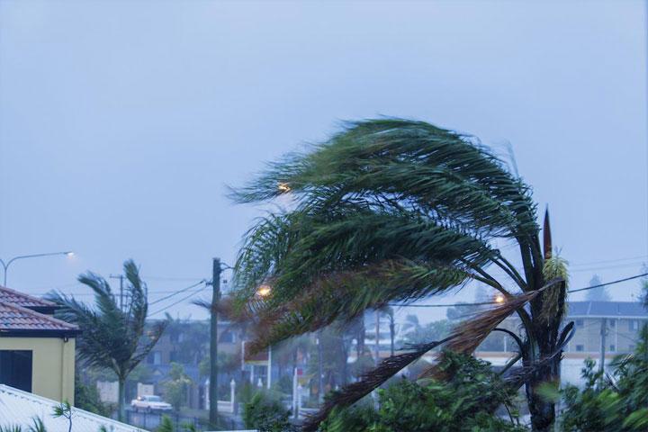 台風・雷などの自然災害